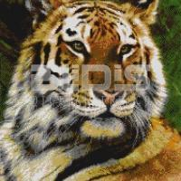 Glass Tile Mural: Tiger